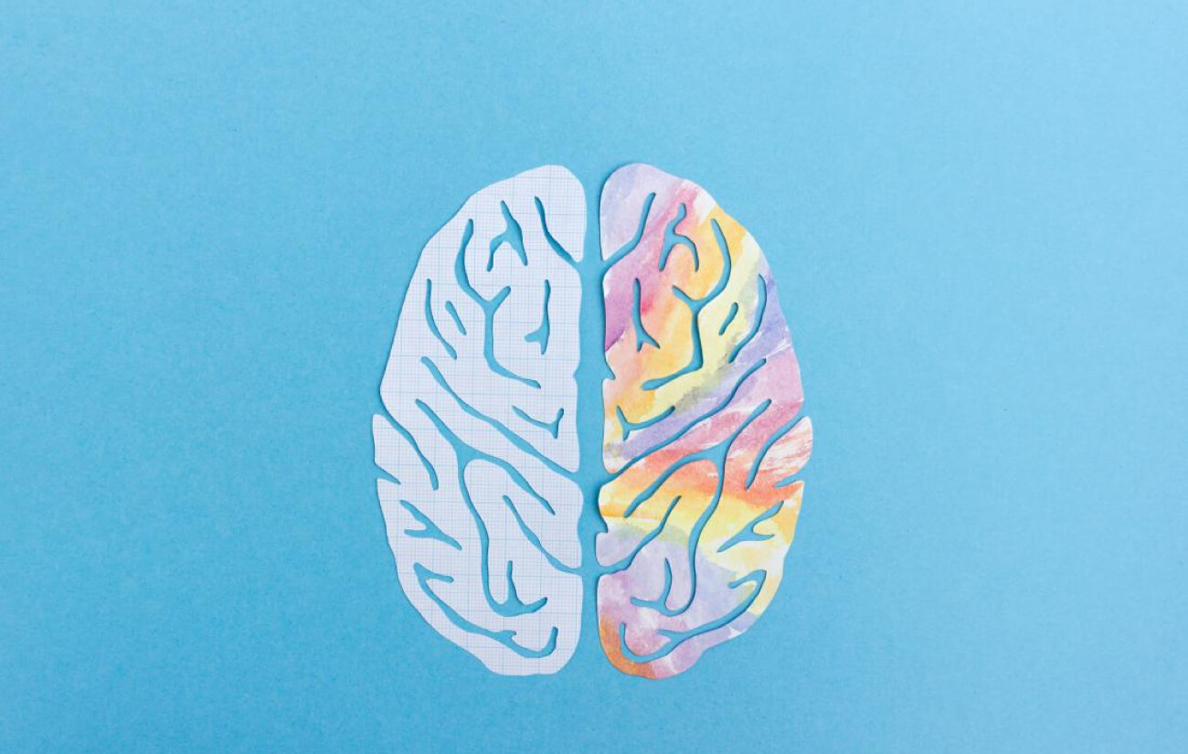 The right brain vs the left brain