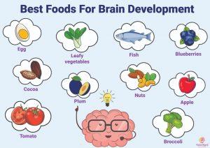Best Food Development for brains